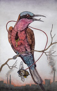 http://thinkspacegallery.com/2012/03/show/Caitlin-Hackett_the-bee-eater-lowres.jpg