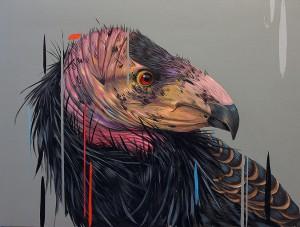 http://thinkspacegallery.com/2013/10/wildatheart/show/FrankGonzales_California-Condor-12x16HIRES.jpg