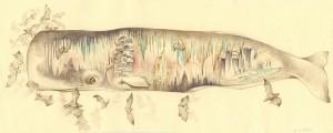 http://thinkspacegallery.com/2011/03/project2/show/Jen-Lobo_secrets_she_keeps_watercolor_web.jpg