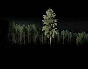 http://thinkspacegallery.com/2009/08/show/Vincent-Skoglund---untitled-1.jpg